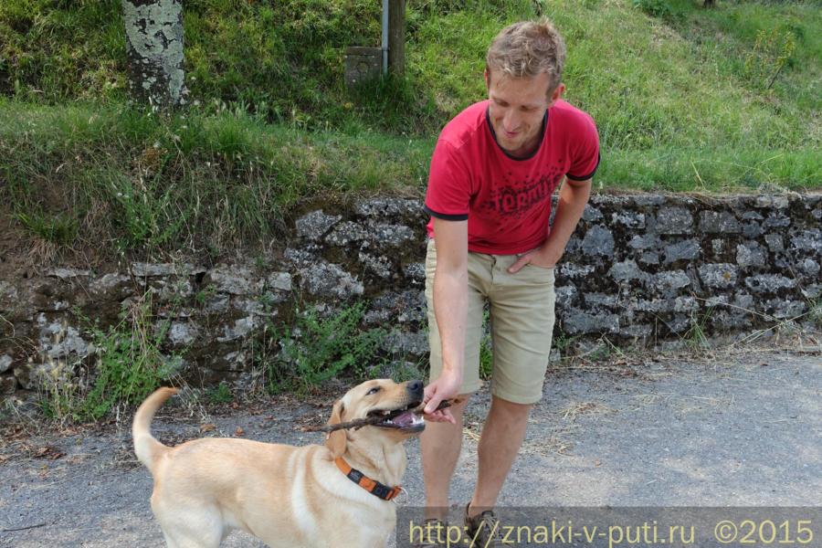 Побегать с собакой за палкой - отличная передышка от компьютера