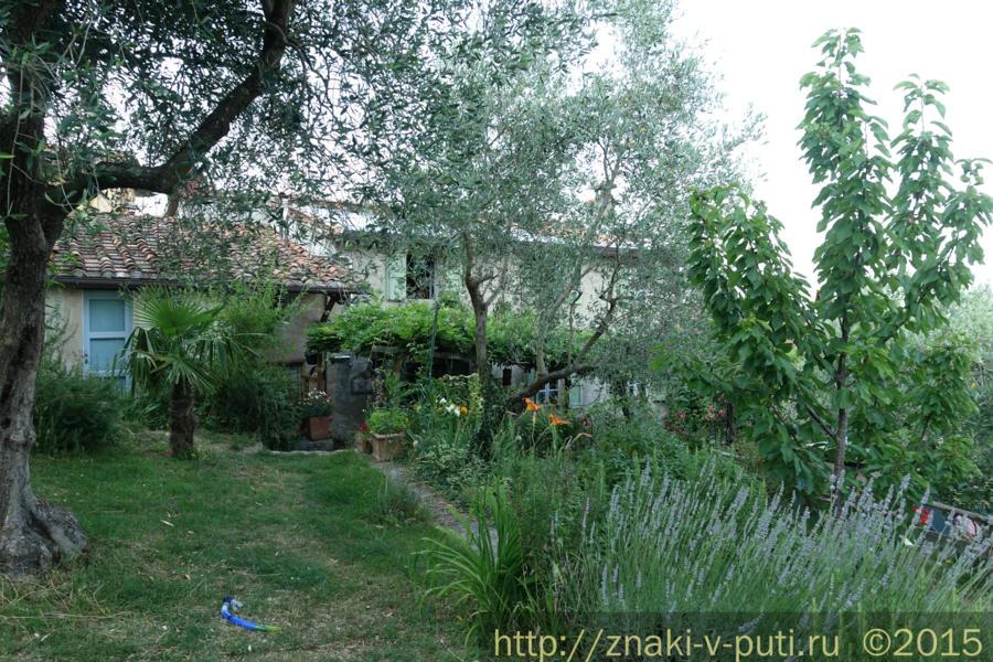 Наш сегодняшний хауссит в Тоскане, возле Лукки, в доме художницы