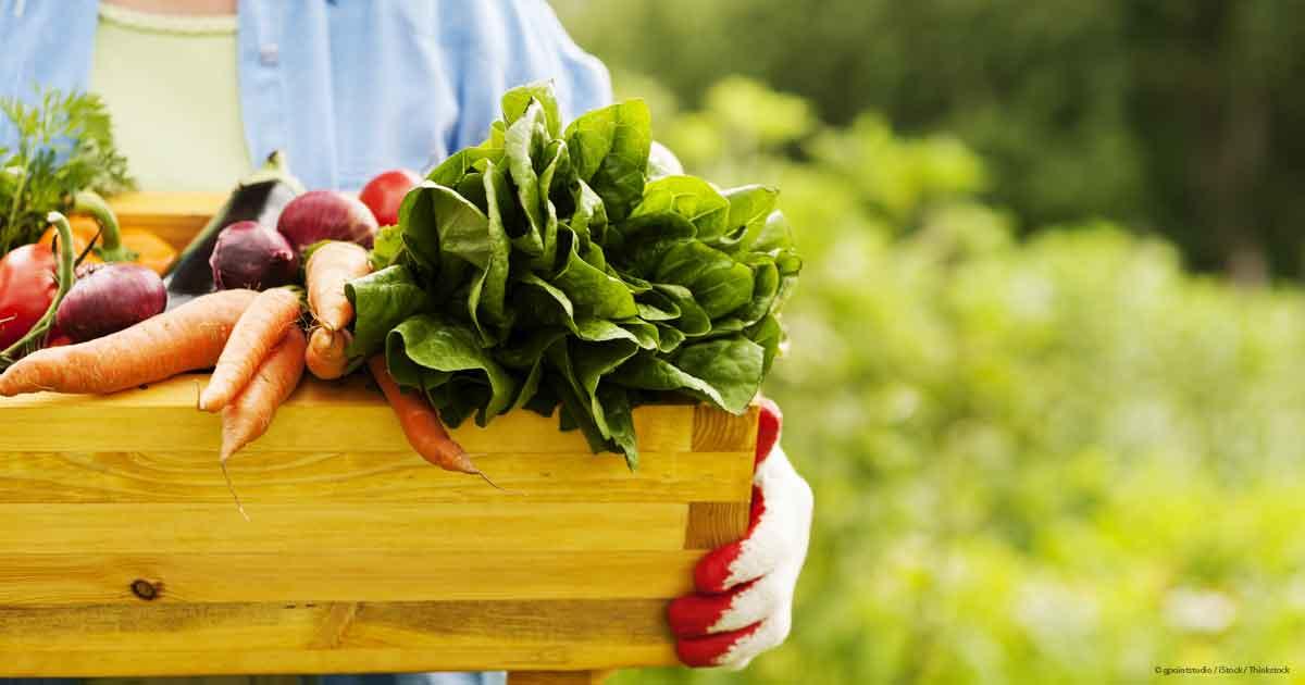 organic-food-fb